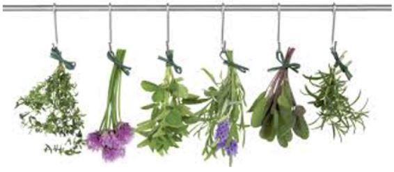 Rochester Herb Society